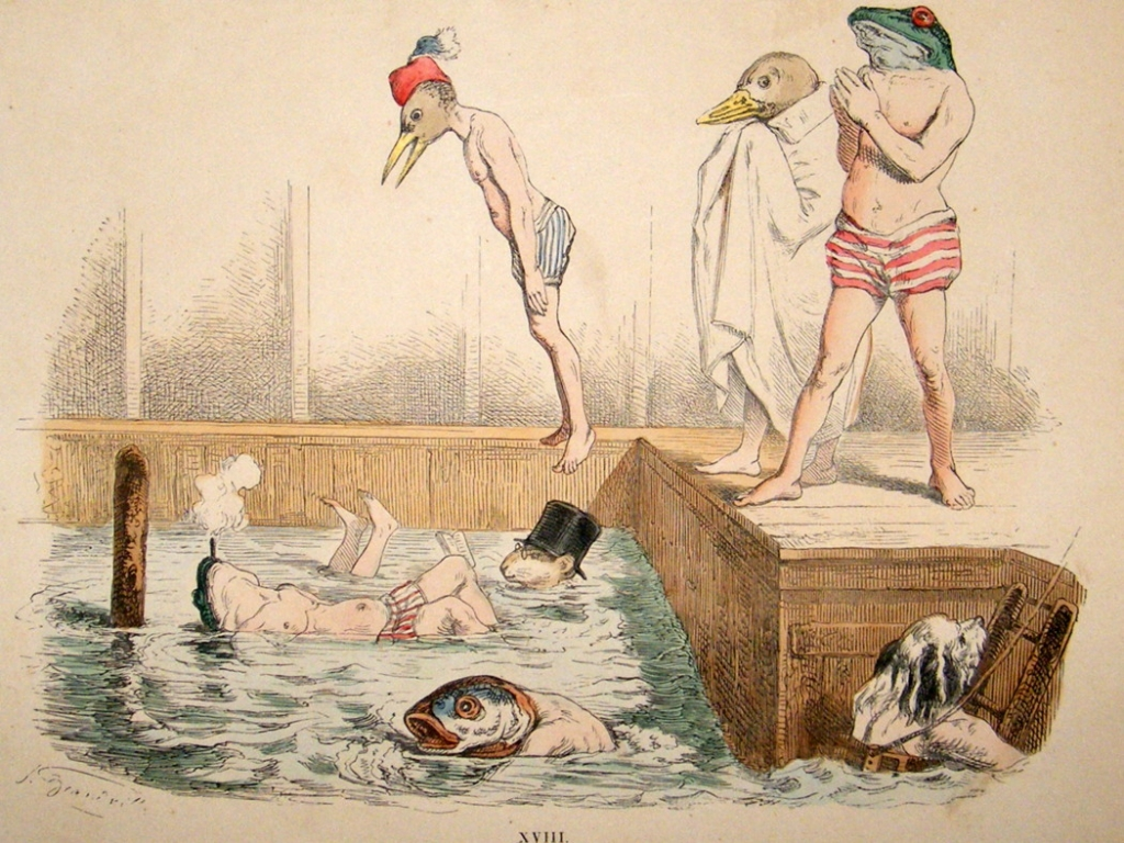 grandville-metamorpheses-c1860-hand-col-print.-swimming-fish-bird-frogs-[2]-34469-p